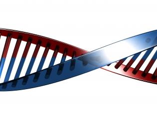 Autism's DNA Identified