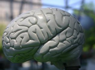 Stress Induced Seizures: Not Epilepsy
