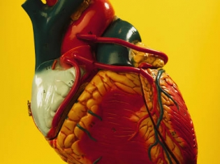 Catheter-based Aortic Valve Replacement