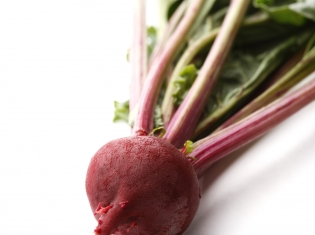 Can't Beet It