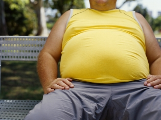 Study on Obesity Gets 'Heated'