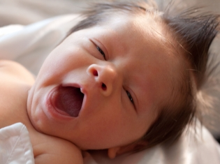 Breastfed Babies Get All the Good Germs