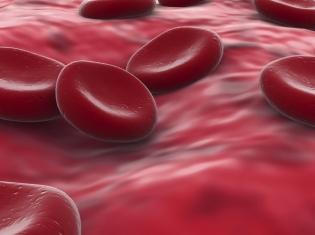 Drug May Prevent Hemophilia Bleeds