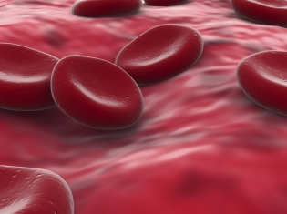 Sepsis May Bring on Immune Dysfunction