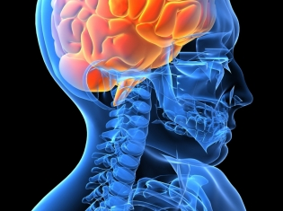 Epilepsy and Psychosis May Share Origin