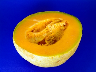 Deaths From Contaminated Cantaloupe Continue to Mount