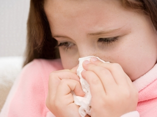 Allergies or a Cold?