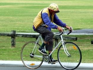 Wearing a Bicycle Helmet Saves Lives