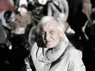 Elderly Women with Low Vitamin D Risk Fracture