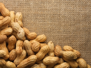 Nuts for Peanuts? You're in Luck