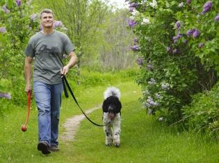 Walk Your Way to Heart Health