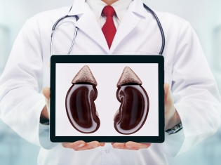 How Kidney Function Affects the Heart