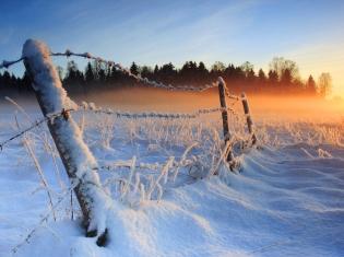 Seasonal Blues: Feeling SAD During the Winter