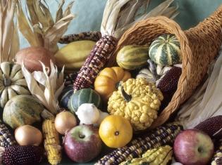 Nutritious Fall Produce