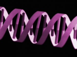 Genome Project Finds Race Disparity Cause