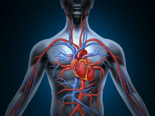 Infection Risk After Heart Surgery