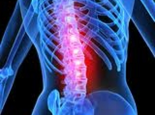 Humira Approved in Europe for Treatment of Spondyloarthritis