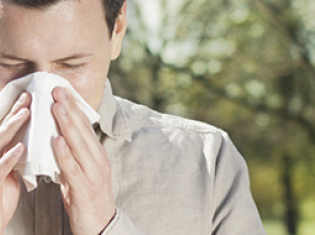Catching Colds in the Summer Heat