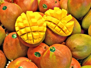 Mexican Mangoes Linked to Salmonella Cases