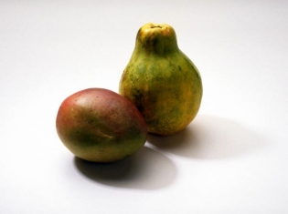 Mangoes Linked to Salmonella
