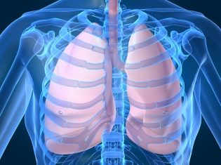 Staying Out of Asthma's Danger Zone