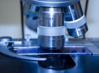 NIH to Study Potential Ebola Vaccine
