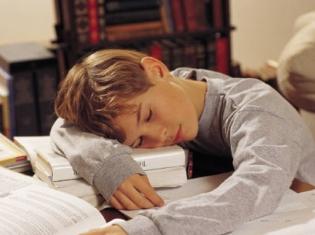 Understanding the Autistic Brain in Sleep