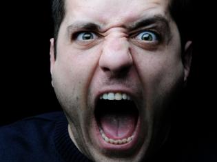 Aggression in the Brain