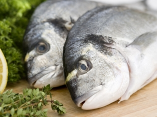 Fish Oil: Possible Stress Soother