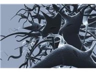 Unlocking and Blocking Cancer