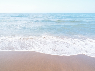 Florida Beaches See Bacteria Scare