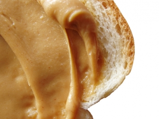 Salmonella Closes Peanut Butter Plant