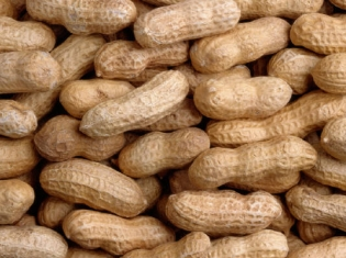 New Test for Peanut Allergies