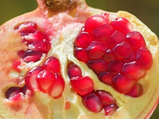 More Good News about Pomegranate Juice