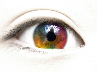 Eyes Wide Open to Stem Cell Potential