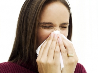 New MS Research Nothing to Sneeze At
