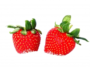 Does Fructose Make You Fat?