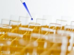 Cancer Studies Often Flawed