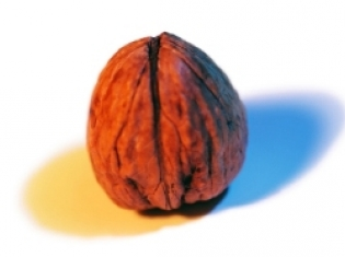 Walnuts Decrease Breast Cancer Risks