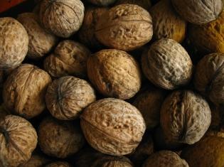 Eillien's Candies Recalls Walnut Pieces Due to Possible Health Risk