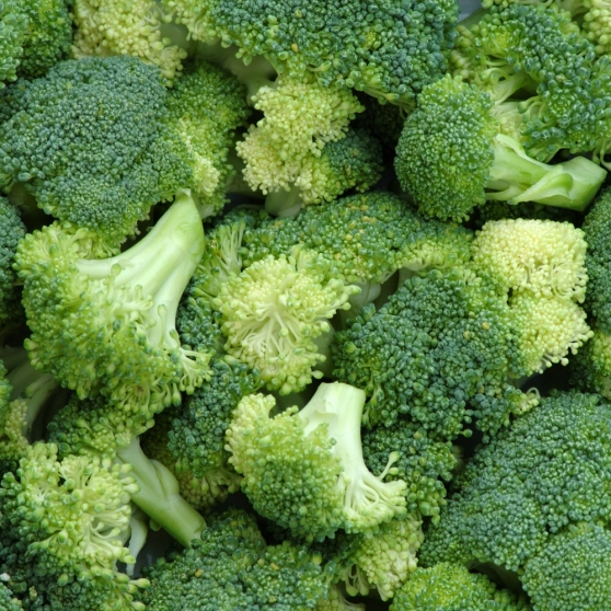 an overview of the broccoli vegetable in the food consumption But the particular compounds that we believe give broccoli and related vegetables their health value need to come from the complete food  whole food consumption although broccoli has the.