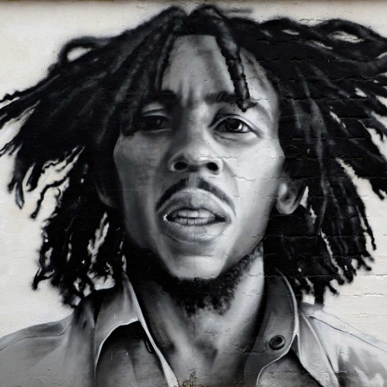 Celebrities With Skin Conditions Bob Marley Melanoma Rxwiki