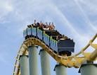 A Roller Coaster Ride into the ER