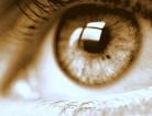 Eye Damage Means Brain Damage