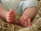 Circumcision Complications Rate Clarified