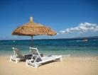 New Mosquito-Borne Disease in the Caribbean