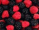 Berries Blamed for Hepatitis A Outbreak