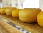 Bleating Heart Cheese Recalls Various Cheeses