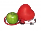 Obesity Changed Shape and Function of Heart