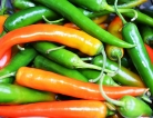 Possibility of Salmonella Prompts Recall of Serrano Peppers